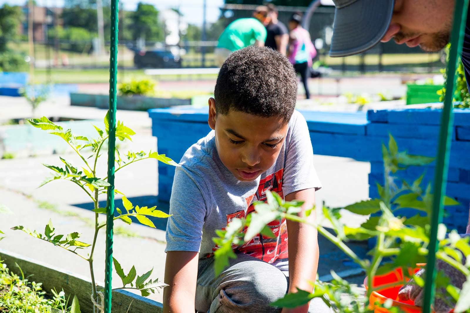 boy in the garden at Boys & Girls Club of Pawtucket